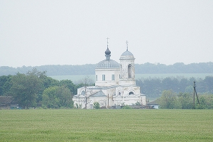 Храм Михаила Архангела с. Васильевка
